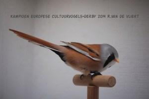 Kampioen europese cultuurvogels