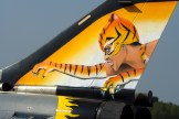 French air force Tiger tail Rafale
