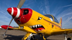 IMGP5124-SIAI-Marchetti SF-260D ST-42 Belgian Air Force