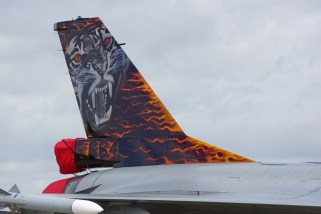 Tigertail of Norwagian Air Force F-16A 664