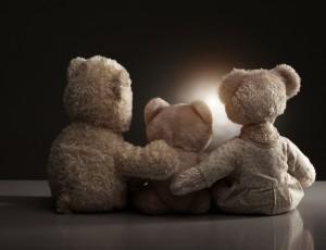 Medvedki, zazrti v prihodnost