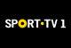 'Porto – Benfica': SportTV emite em direto o jogo