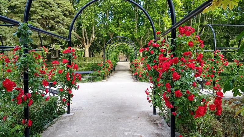 Parque grande en primavera en zaragoza es una de las mejores opciones para pasar el tiempo