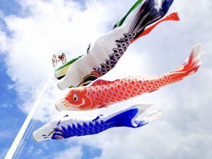 こどもの日 鯉のぼり