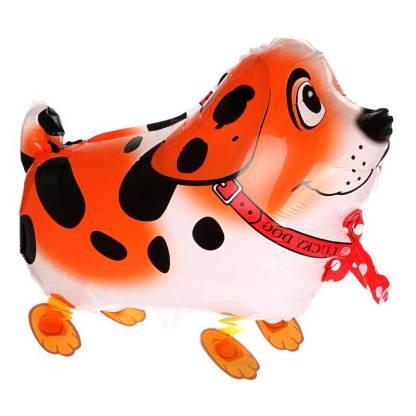 Ballonhund Ballonfigur Hund orange
