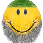 sunnah beard