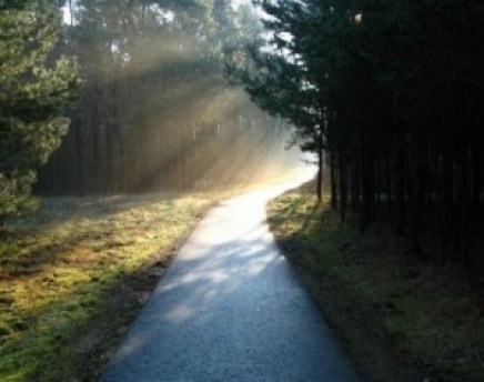 Beautiful road with light ahead, road through a forest, the future