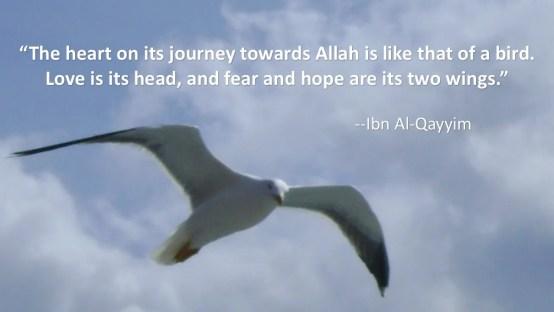 Ibn-Al-Qayyim-Fear-and-Hope