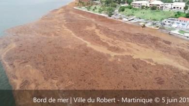 Photo of Algues Sargasses : vue aérienne impressionnante des quartiers du Robert