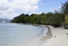Photo de Une pétition mise en ligne pour demander la réouverture des plages en Martinique pour pratique d'une activité sportive
