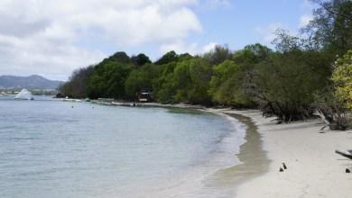Photo of Baignade interdite à l'Anse Caritan à Sainte-Anne jusqu'à nouvel ordre