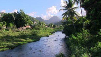 Photo of Appel à la vigilance sur l'usage de l'eau en Martinique