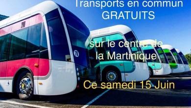 Photo of TCSP, Bus, vedettes maritimes : gratuité des transports du centre