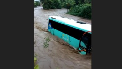 Photo of Tempête tropicale Dorian : la commune de Rivière-Pilote reconnue en état de catastrophe naturelle