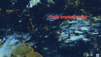 Photo of Une onde tropicale active prévue mercredi soir avec quelques bonnes rafales de vent