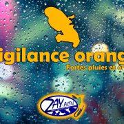 Vigilance orange pour fortes pluies et orages.