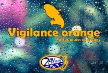 Photo de Onde tropicale : la Martinique en vigilance orange pour fortes pluies et orages