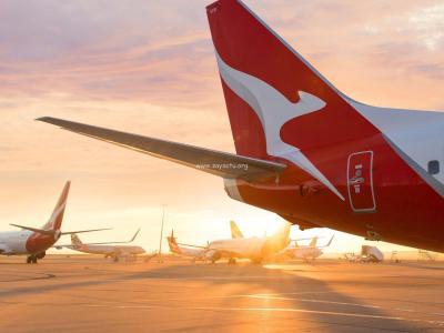 La compagnie aérienne Qantas.