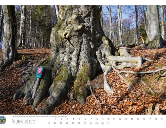 Vychodni-Krusne-hory_kalendar-2020-11-1000px