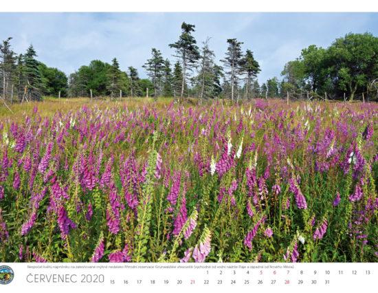 Vychodni-Krusne-hory_kalendar-2020-8-1000px