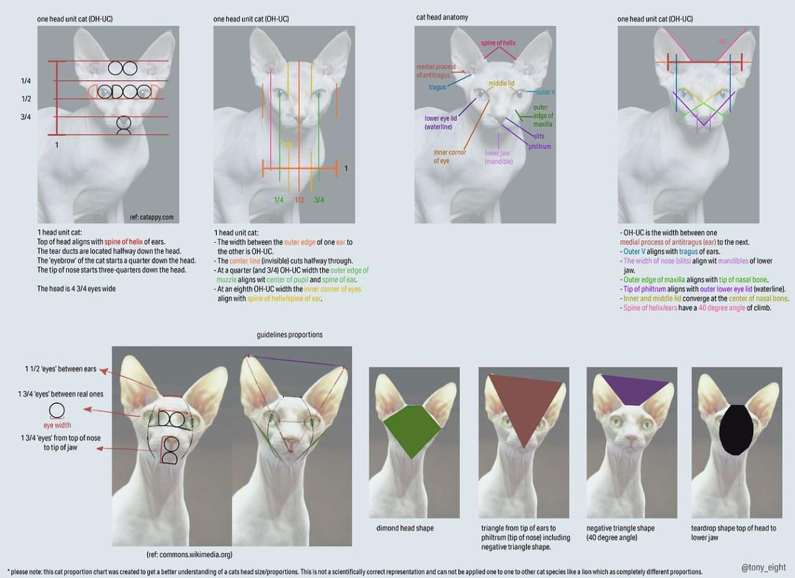 sphinx_measurment_chart_01