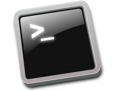 bash logo (image: Shutterstock)