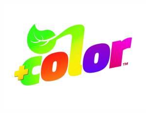 SUBWAY Restaurants partner with the American Heart Association for the +color Initiative @zealousmom.com