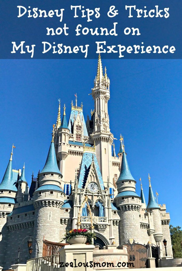 Despite A LOT of helpful advice from friends, blogs, Pinterest boards, websites and other places, things still came up during our Disney trip I hadn't planned for. Today on the blog I share some of those in hopes of being helpful to others as they plan their magical week at Disney. @zealousmom.com