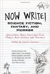 Now Write! book cover