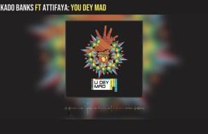 "DOWNLOAD Reekado Ft. AttiFaya - ""You Dey Mad"" Lyric Video"