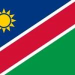 Namibia FA Logo