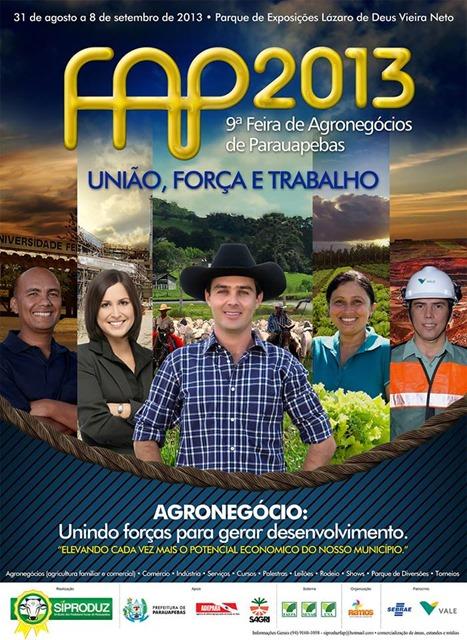 cartaz oficial FAP 2013