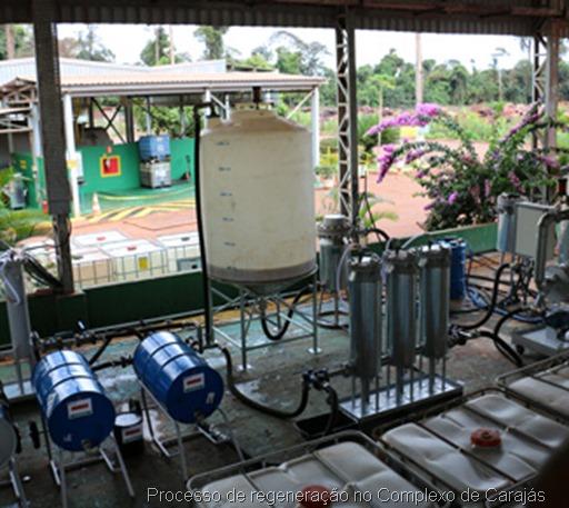 rocesso de regeneração no Complexo de Carajás Crédito Vale