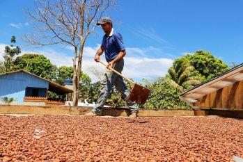 São Félix do Xingu: Territórios Sustentáveis inicia nova etapa de ações com os produtores rurais