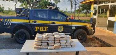 Altamira: PRF apreende 53,5 quilos de skunk escondidos em caminhonete
