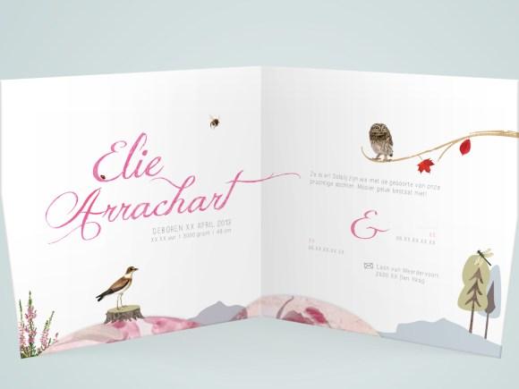 Elie_geboortekaart