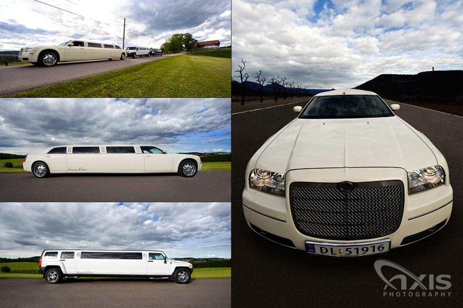 limousine-partner-02
