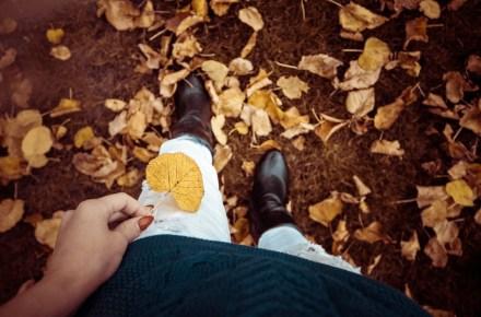 Must-haves herfst