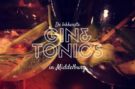 Gin Tonic Lekkerste Middelburg Zeeland