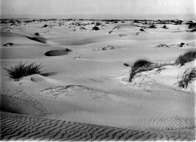 חולות עמק חפר 1930