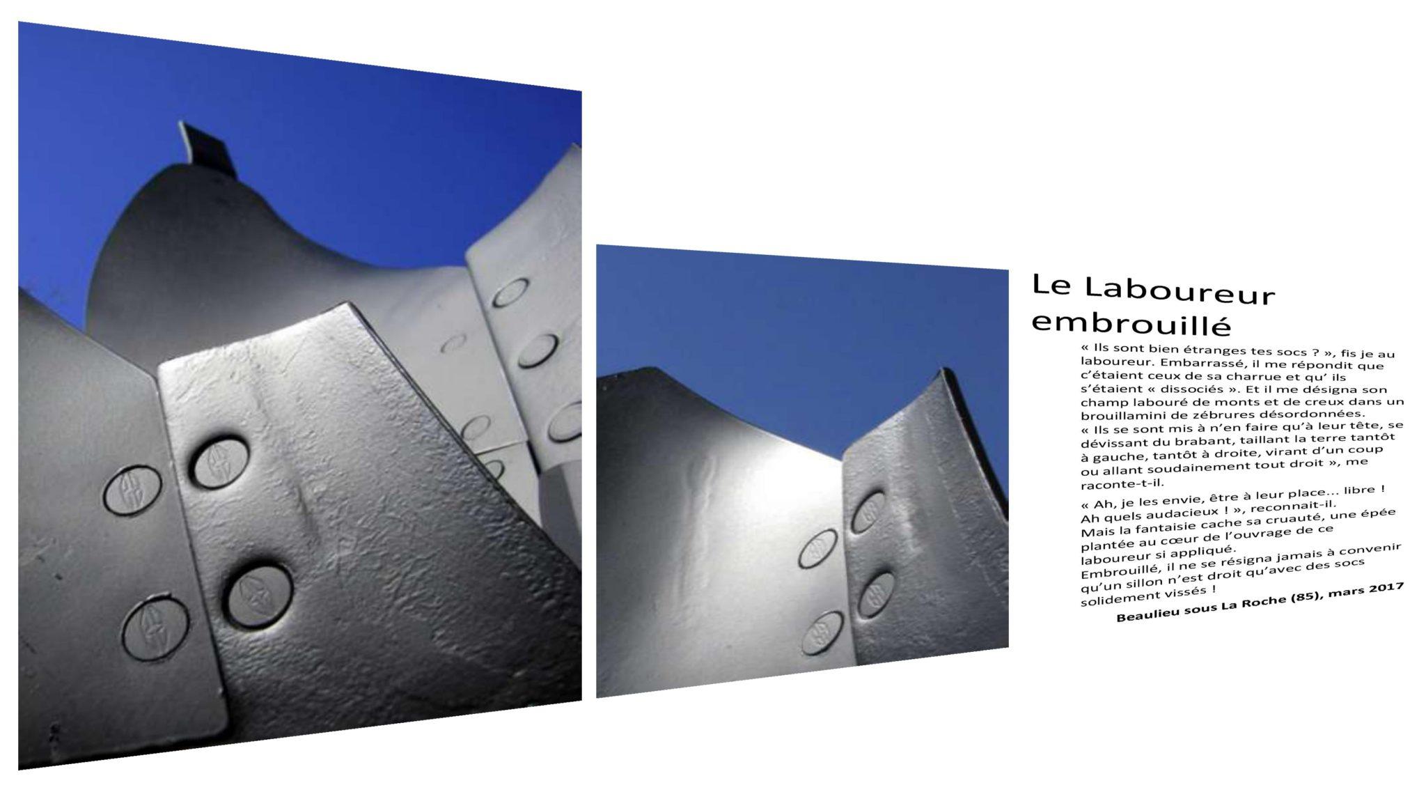 (c) Jean-Michel Pouzet