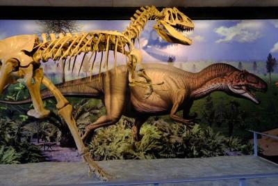 Tommy Pützstück Dinosaur National Monument VII 2018