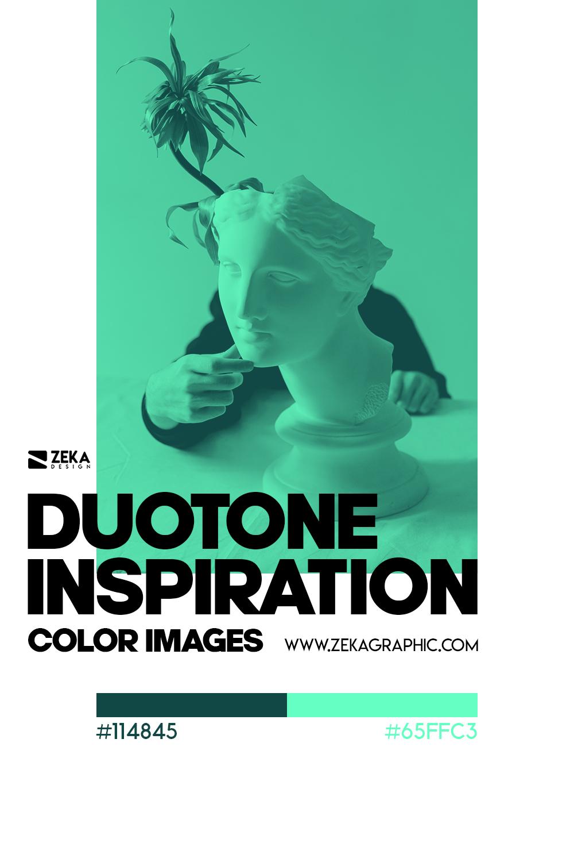 Graphic Design Color Duotone Inspiration 02