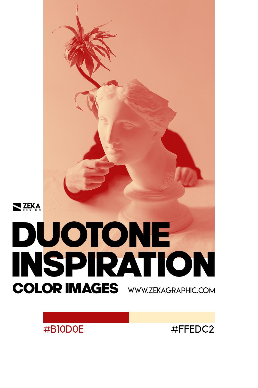 Graphic Design Color Duotone Inspiration 04