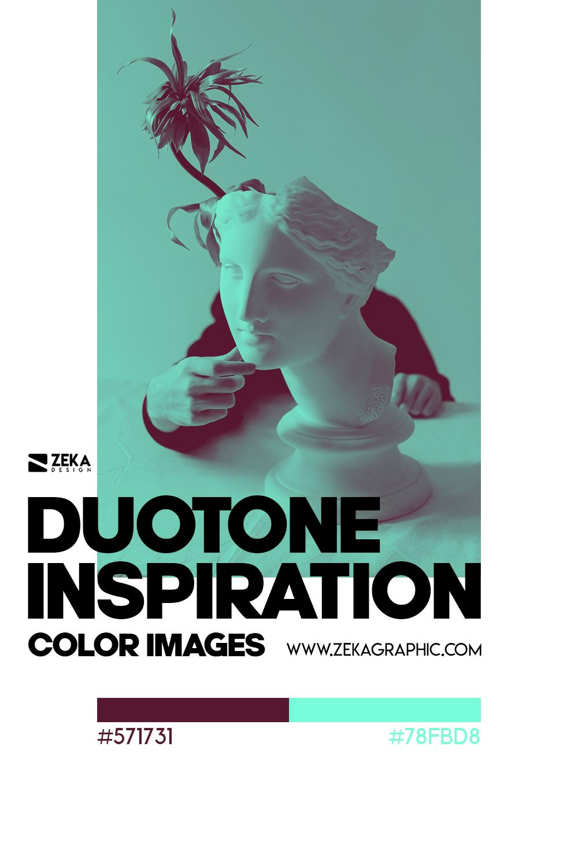 Graphic Design Color Duotone Inspiration 10