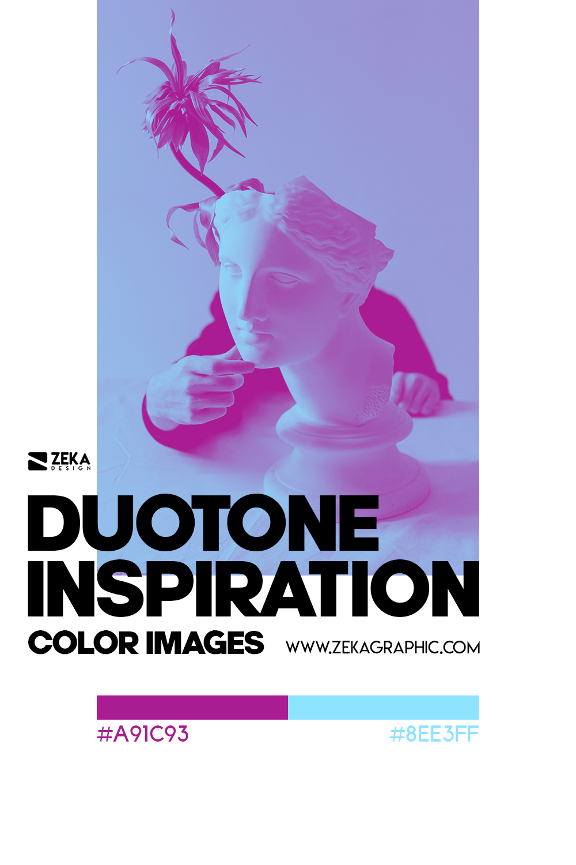 Graphic Design Color Duotone Inspiration 11