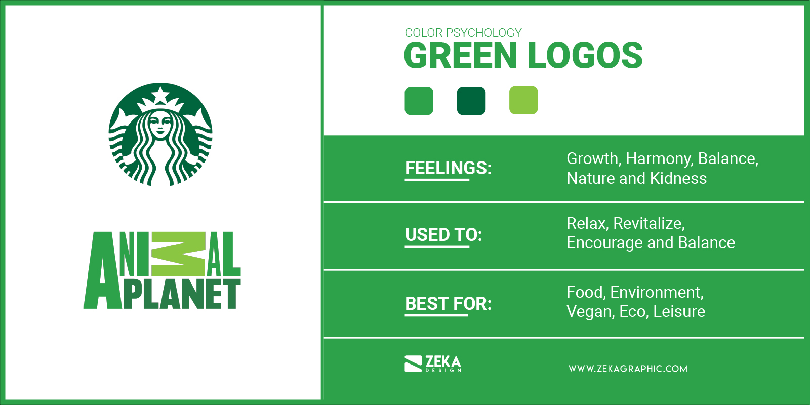 Green Logos Meaning in Graphic Design and Logo Design