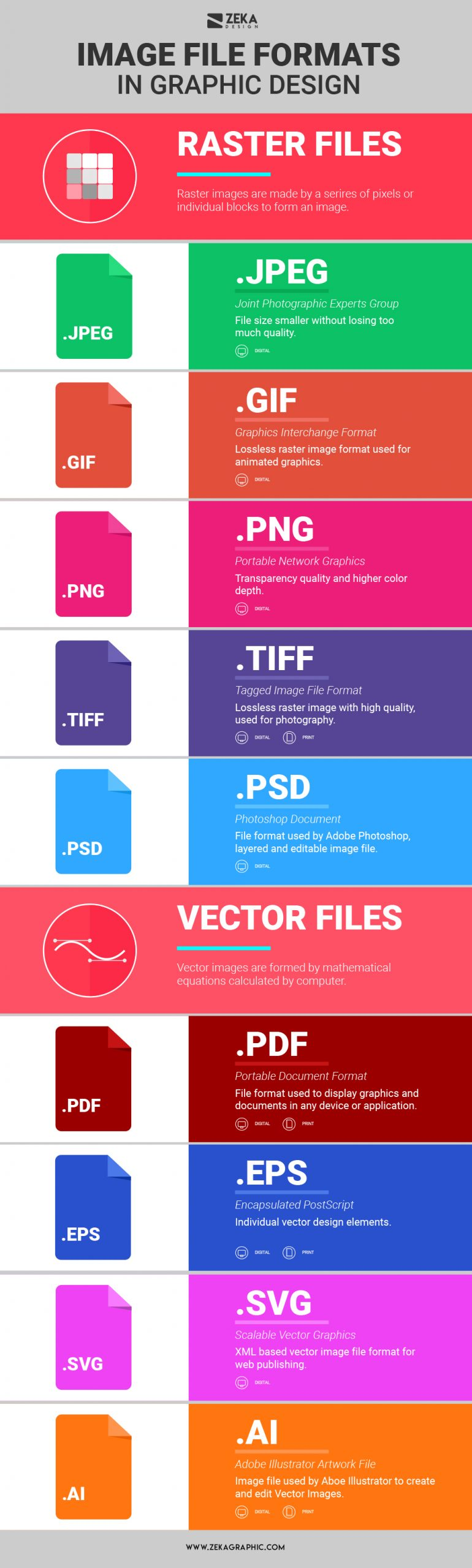 Image File Formats In Graphic Design Explained Infographic