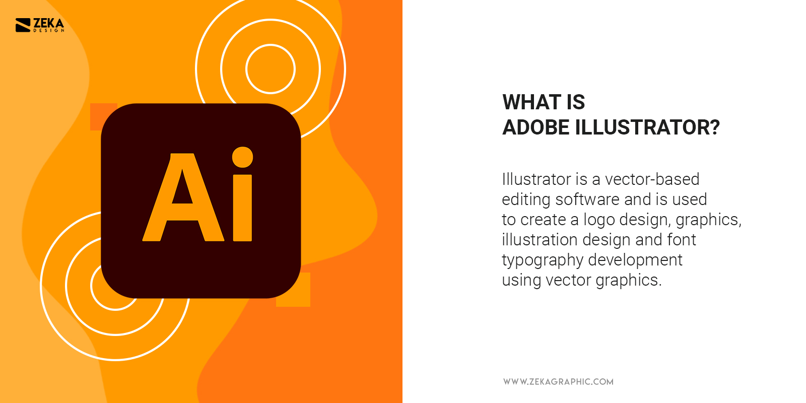 What Is Adobe Illustrator Explained and difference between photoshop