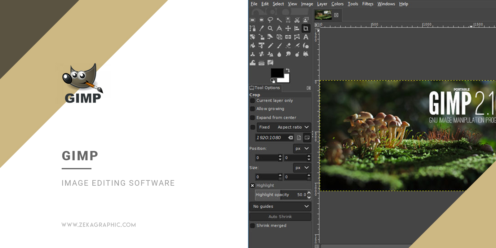 Gimp Image Editing Software for Graphic Design